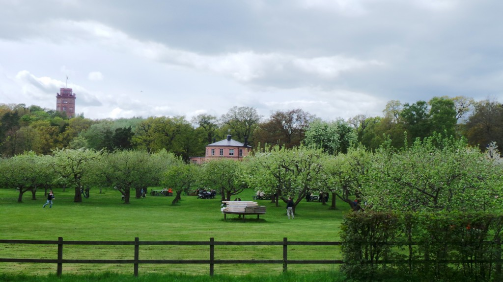 Picnic Grounds near Rosendal Palace