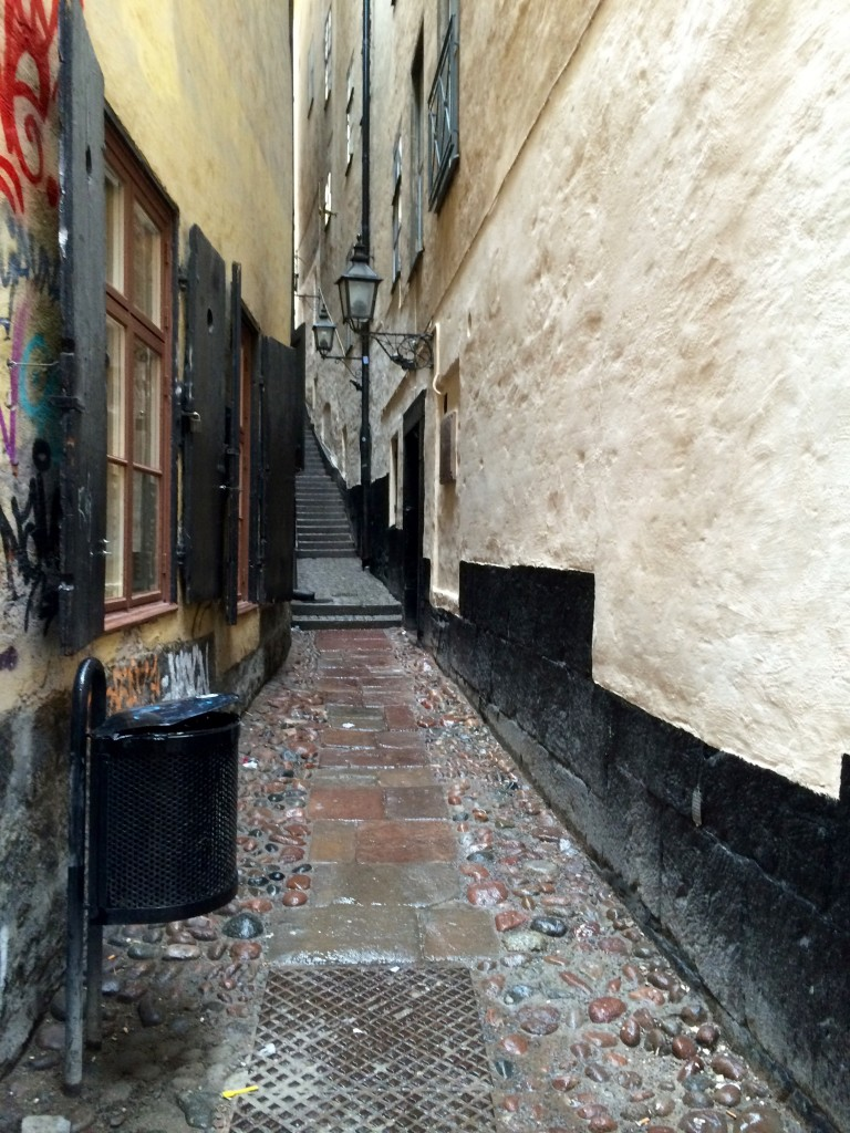 The narrowest alley in the city