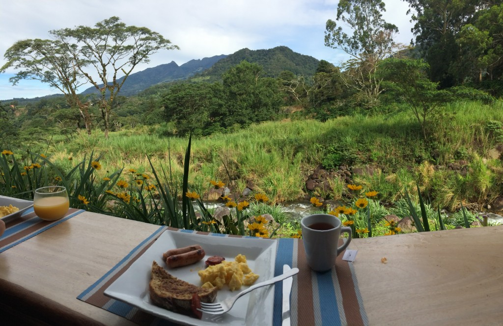 Personally, I enjoyed the view over breakfast