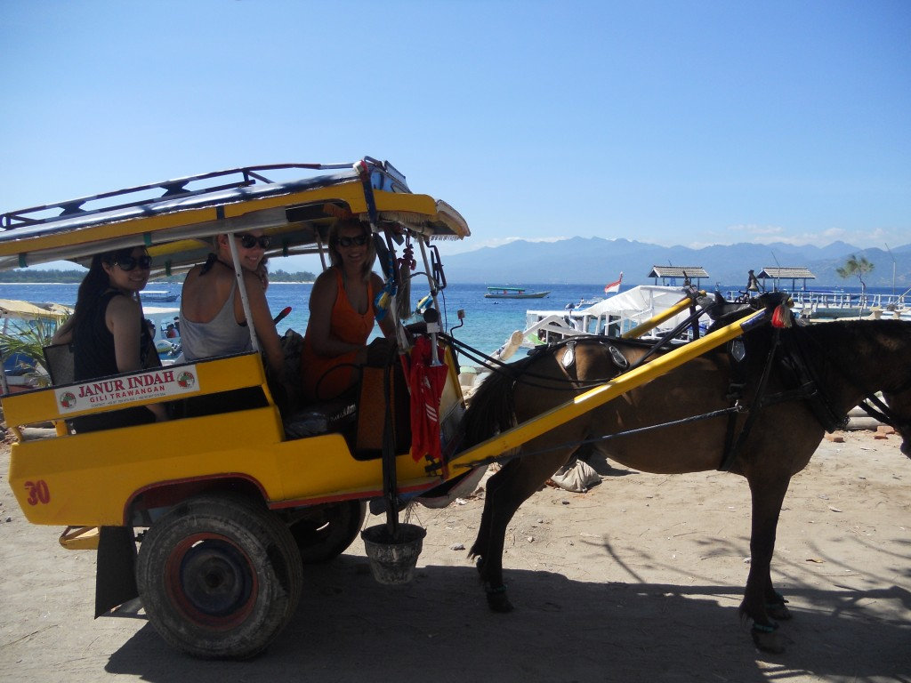 Horse drawn carriage on Gili Trawangan