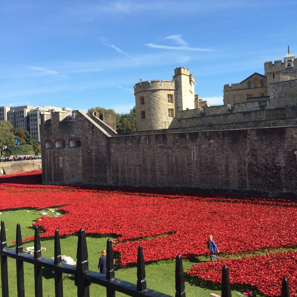 The Tower of London surrounded by Poppies