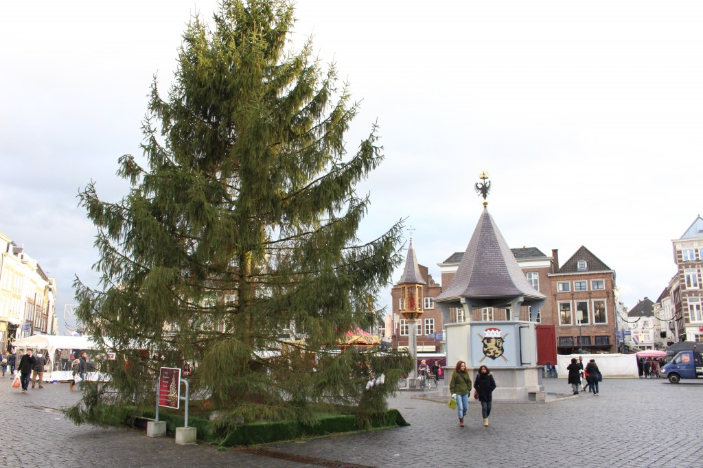 The Market square with its Christmas Tree